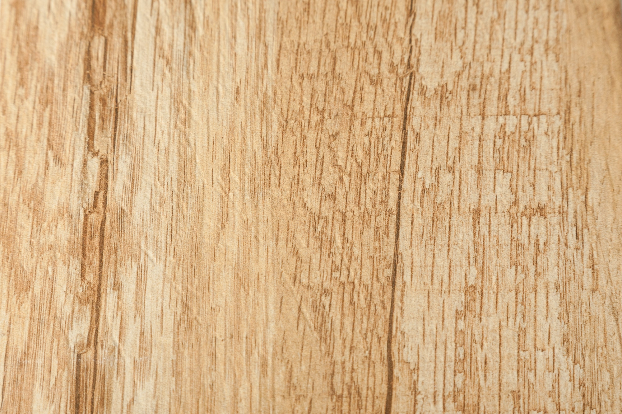 Free samples salerno ceramic tile barcelona wood series rustic free samples salerno ceramic tile barcelona wood series rustic wood 6x24 dailygadgetfo Choice Image