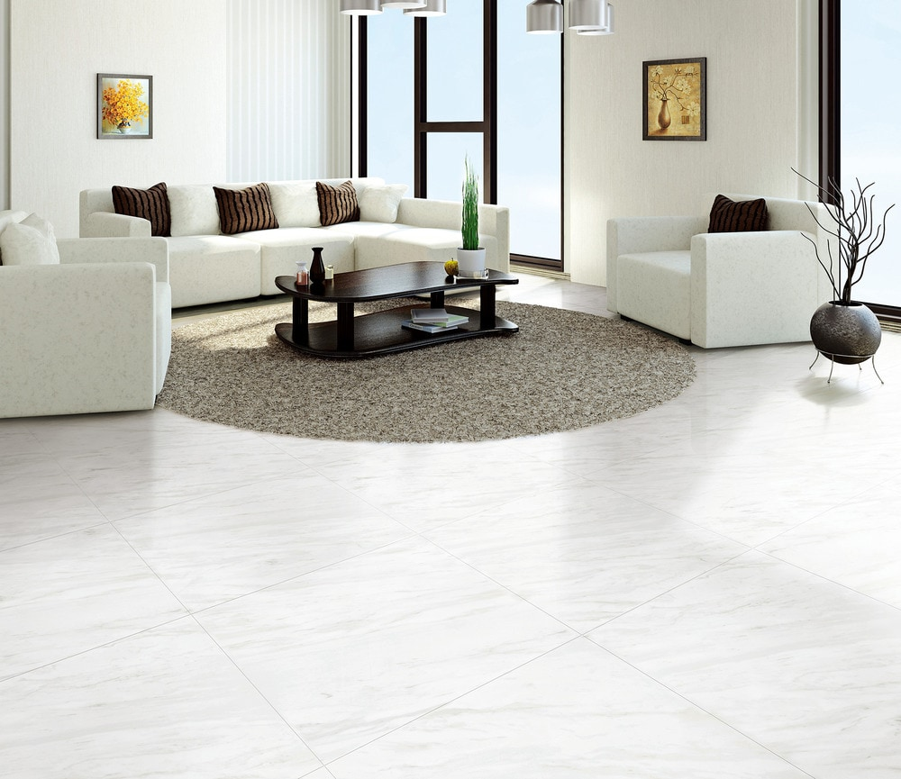 Free Samples Salerno Porcelain Tile Carrara Venato Series Venato