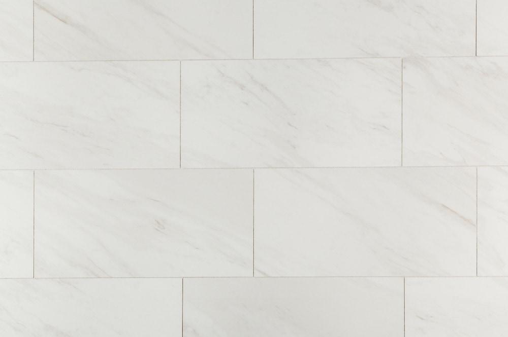 10096653-salerno-carrara-venato-matte-12x24-multi