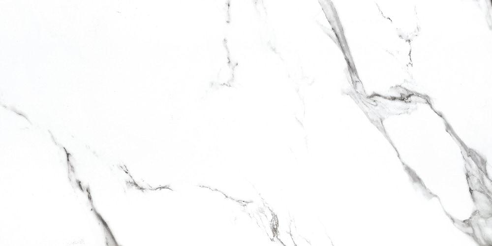 15191921---yi36p560-2-