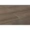 tree-bark-elm-bark-8x45-angle