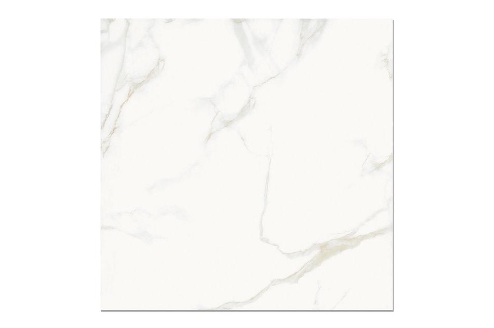 10109643-venus-marble-arabascato-24x24-sup-multi