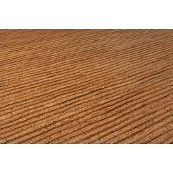 Evora Pallets Cork   Long Plank Terra Collection   Floating Floor