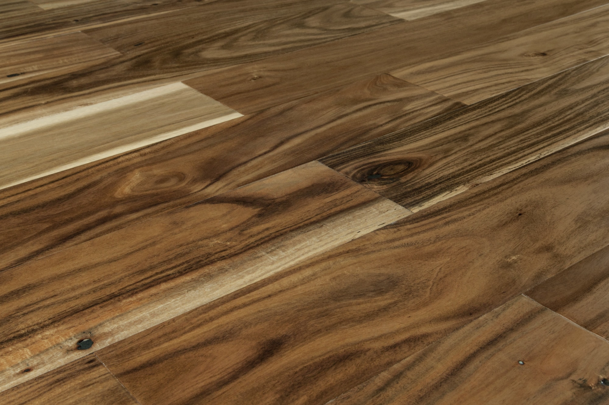 FREE Samples Jasper Engineered Hardwood
