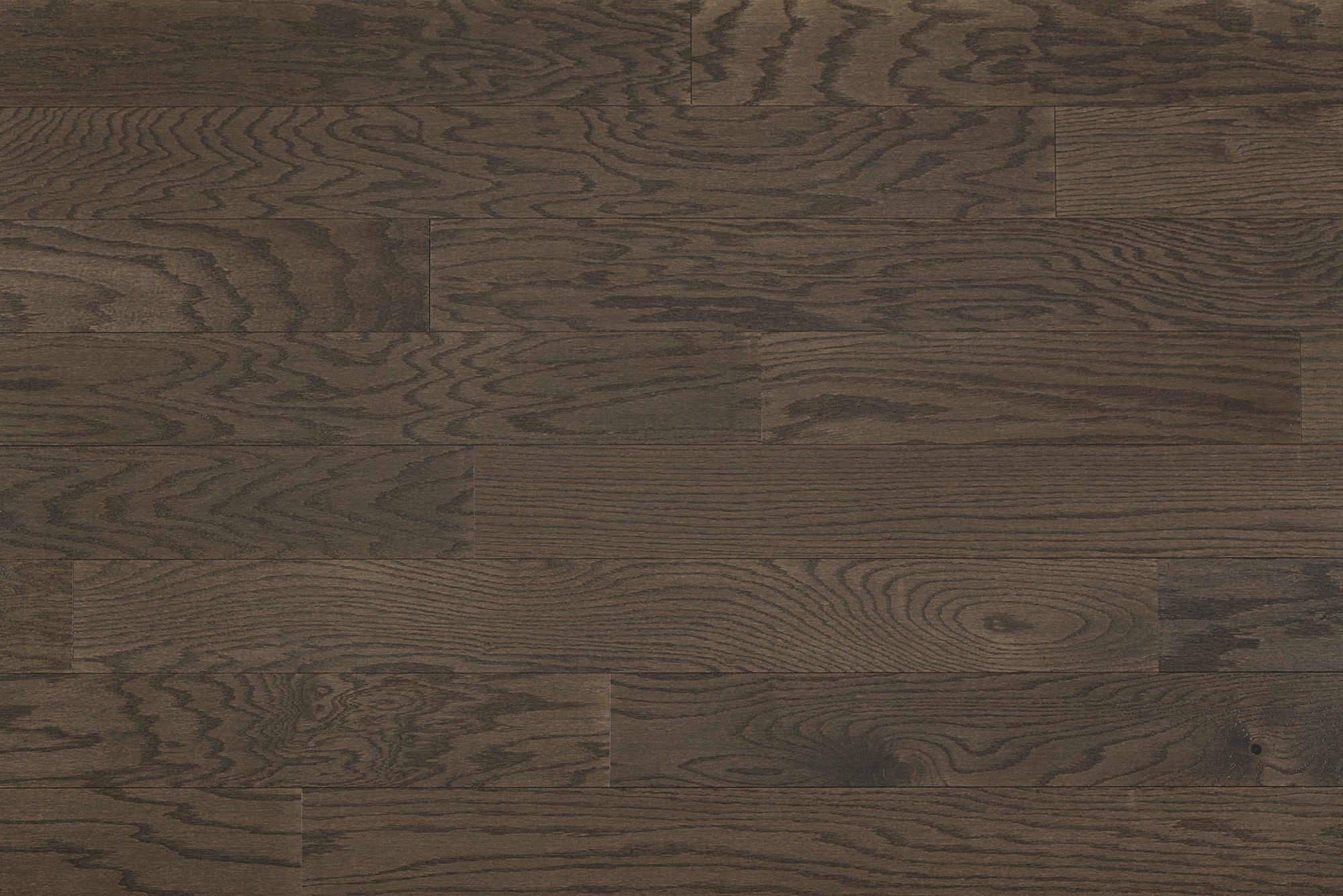 FREE Samples Jasper Engineered Hardwood Red Oak Collection