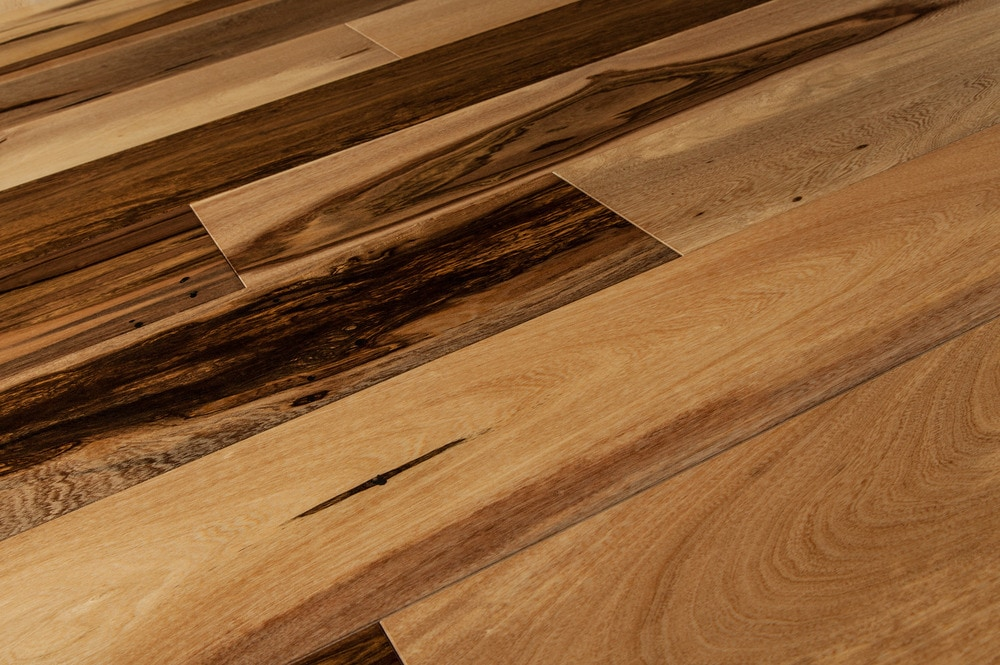 Free Samples Vanier Engineered Hardwood Brazilian