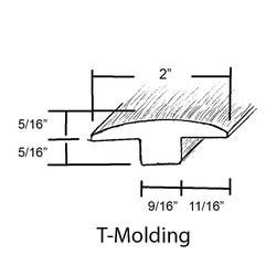inet-t-molding-comp