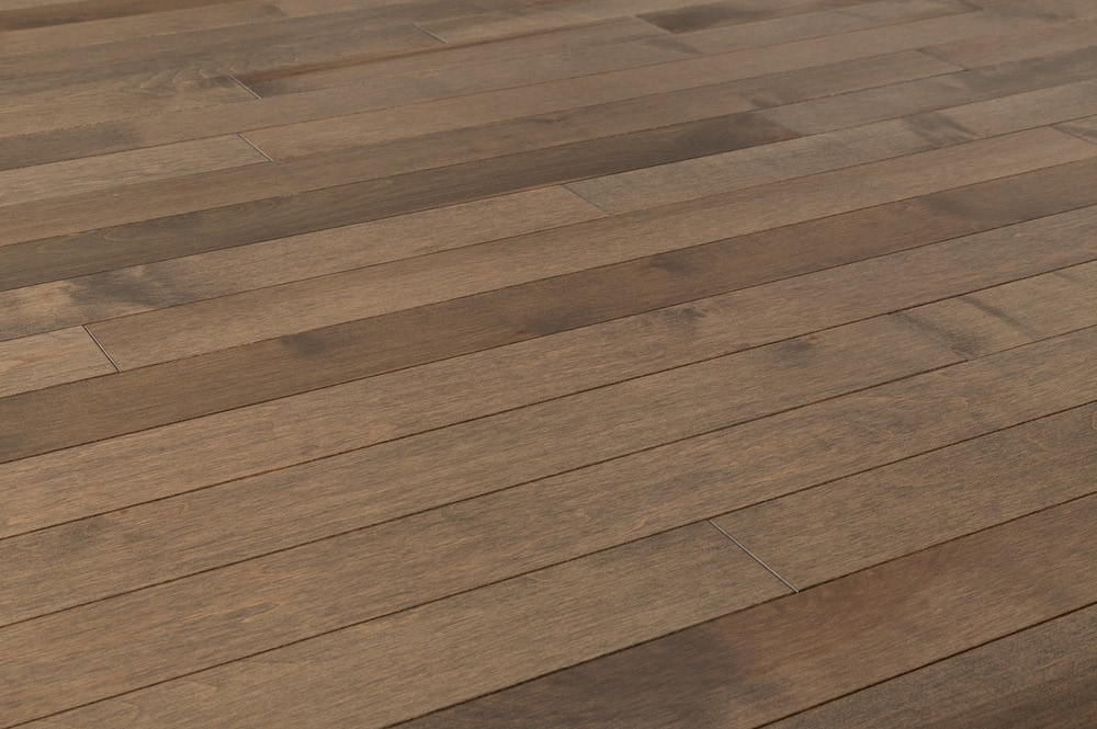 Free samples jasper hardwood canadian maple collection for Maple hardwood flooring