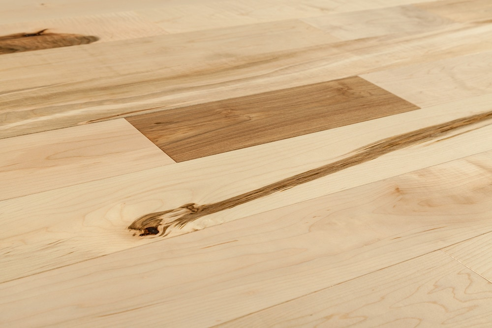 Free Samples Jasper Hardwood Canadian Silver Maple Collection