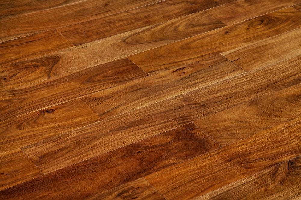 15053174-natural-acacia-standard-angle