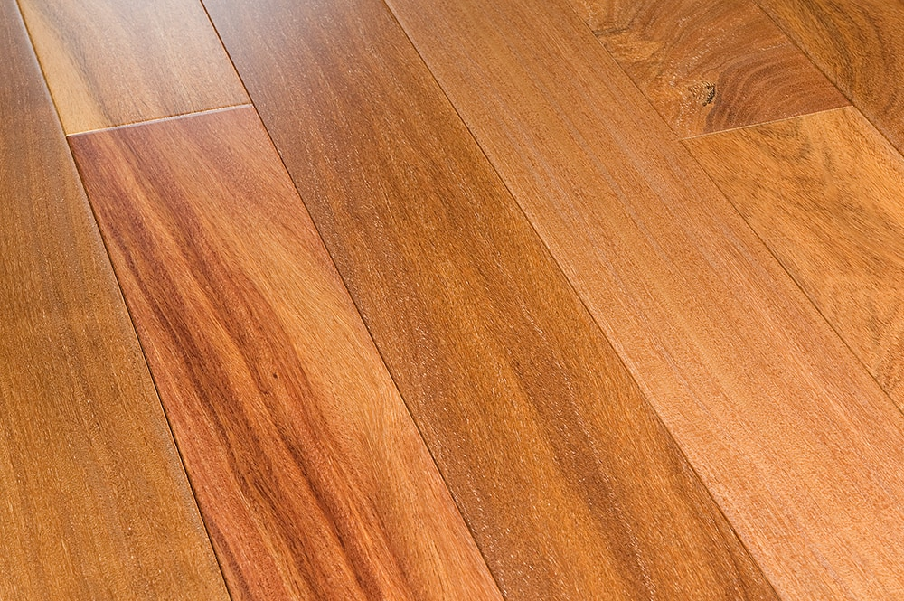 Free Samples Mazama Hardwood Smooth South American