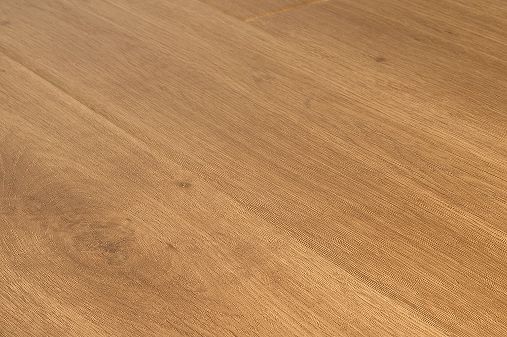 virginia-oak-angle-1000
