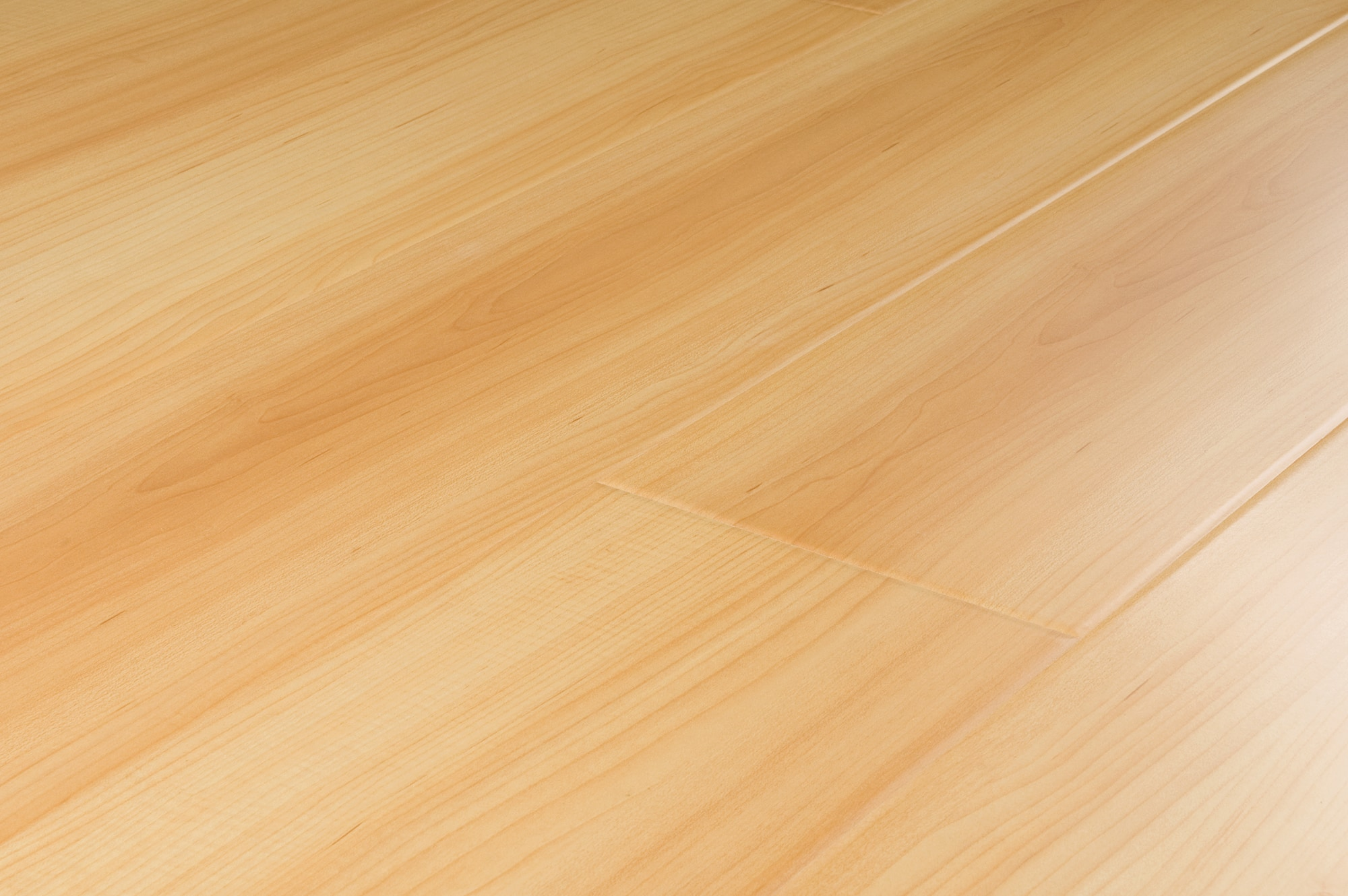 FREE Samples Lamton Laminate 12mm Russia Collection Siberian Maple