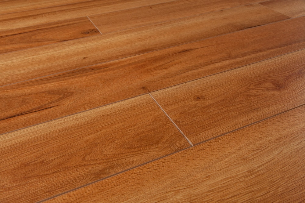 FREE Samples: Lamton Laminate - 8mm Equestrian Collection Irish Draught