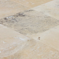 compare sample of travertine honed filled misce