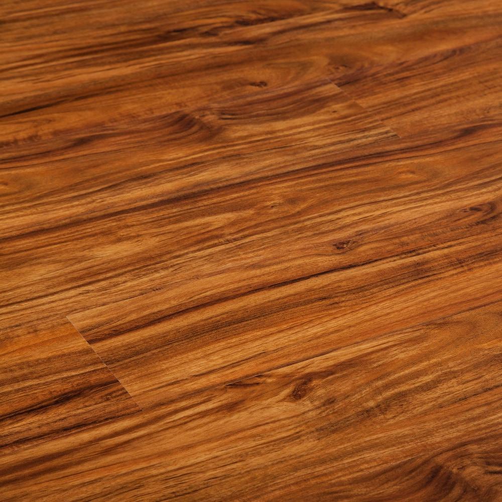 15191131-amber-acacia-comp