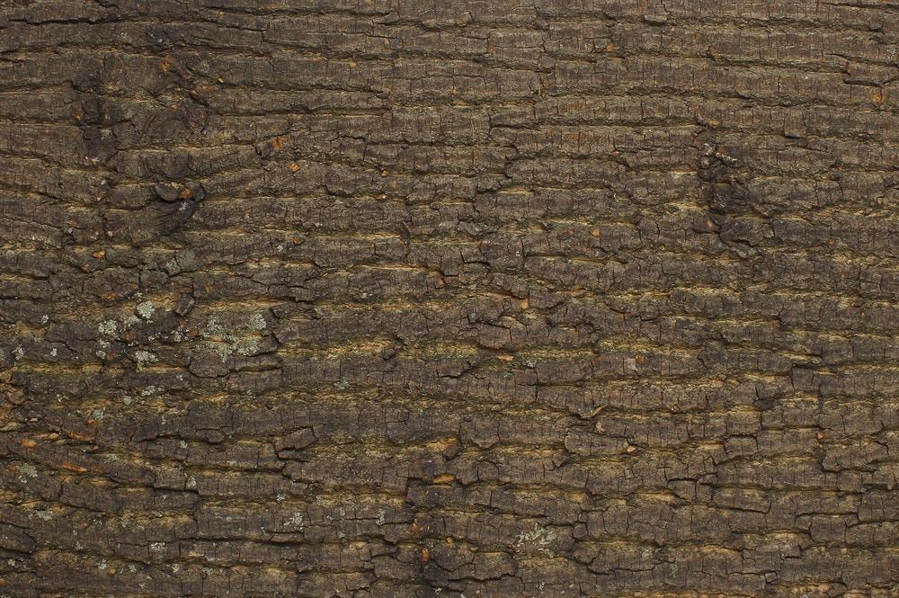 Foss-Co Wall Paneling - Natural Bark Collection Poplar Bark Tile ...