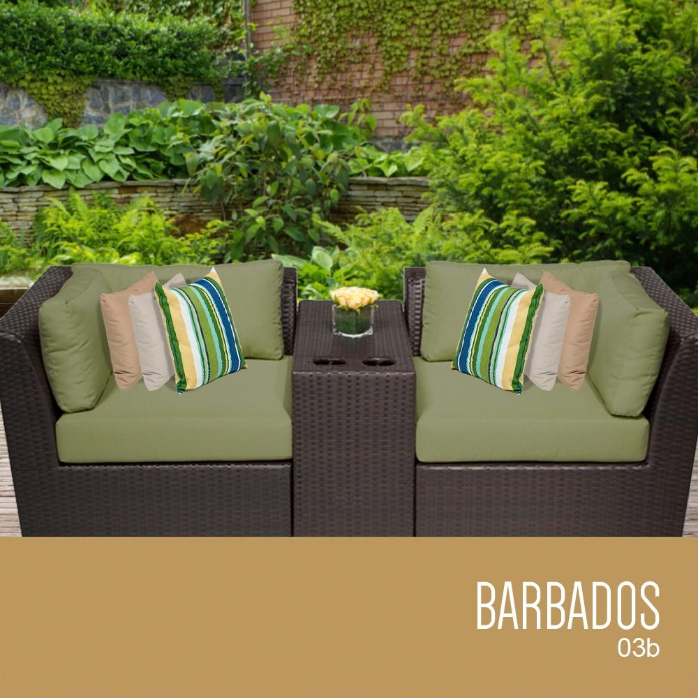 barbados_03b_cilantro_56c9008ae5902