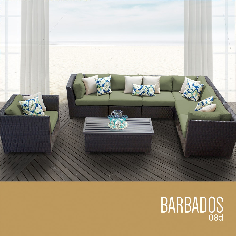 barbados_08d_cilantro_56ca1853c7cbf