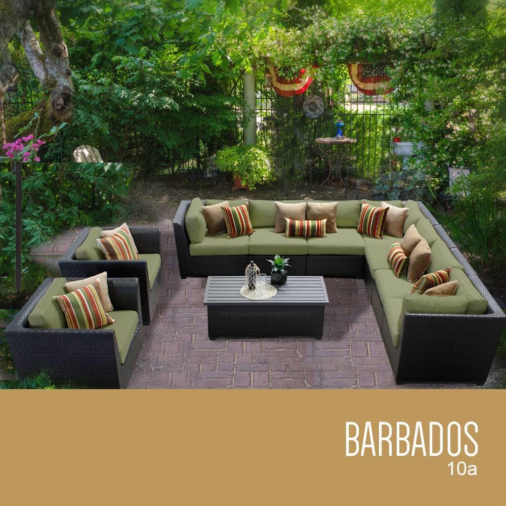 barbados_10a_cilantro_56ca7f42671e9