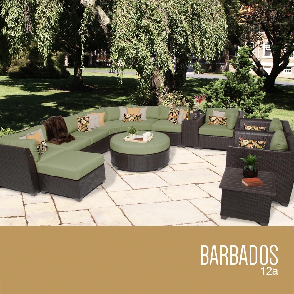 barbados_12a_cilantro_56cb0b7c3422a