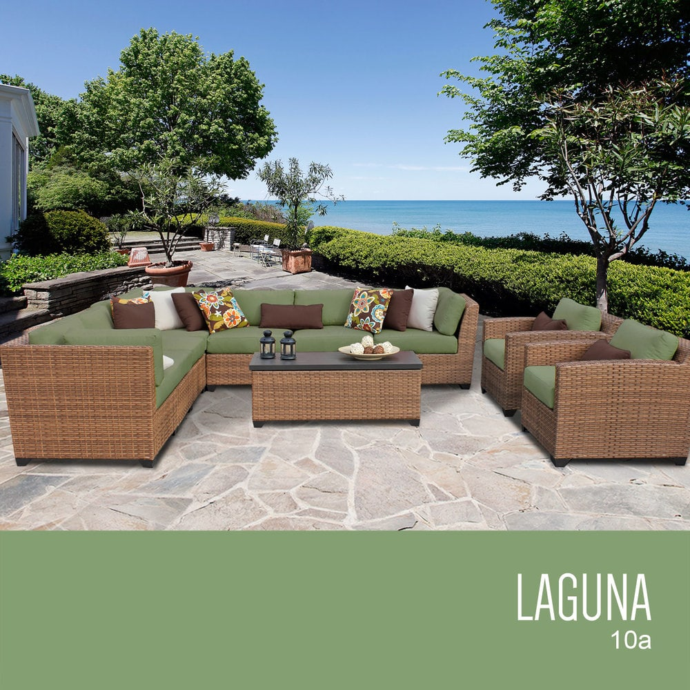 laguna_10a_cilantro_56cc0a0d56b2d