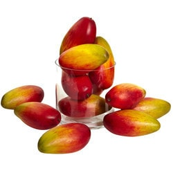 """Nearly Natural - 5.5"""" Weighted Faux Mango (Set of 12)"""
