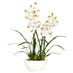 Nearly Natural - Cymbidium w/White Vase Silk Flower Arrangement