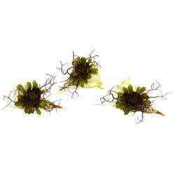 Nearly Natural - Wispy Succulent with Seashell (Set of 3)