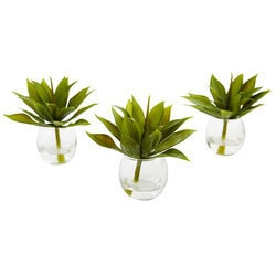"""Nearly Natural - 5.75"""""""" Mini Agave Succulent Trio in Glass Vases (Set of 3)"""