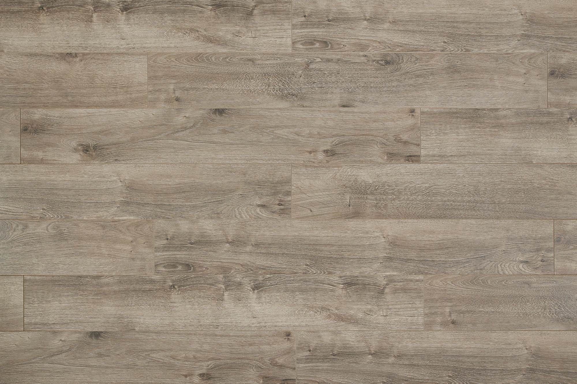 FREE Samples Lamton 8mm Modern Wide Plank Collection Ash Blonde