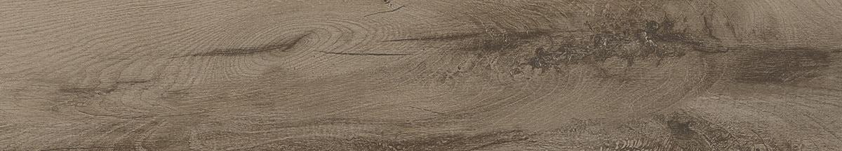 Adore / 6x36 Olympus - Venus 0