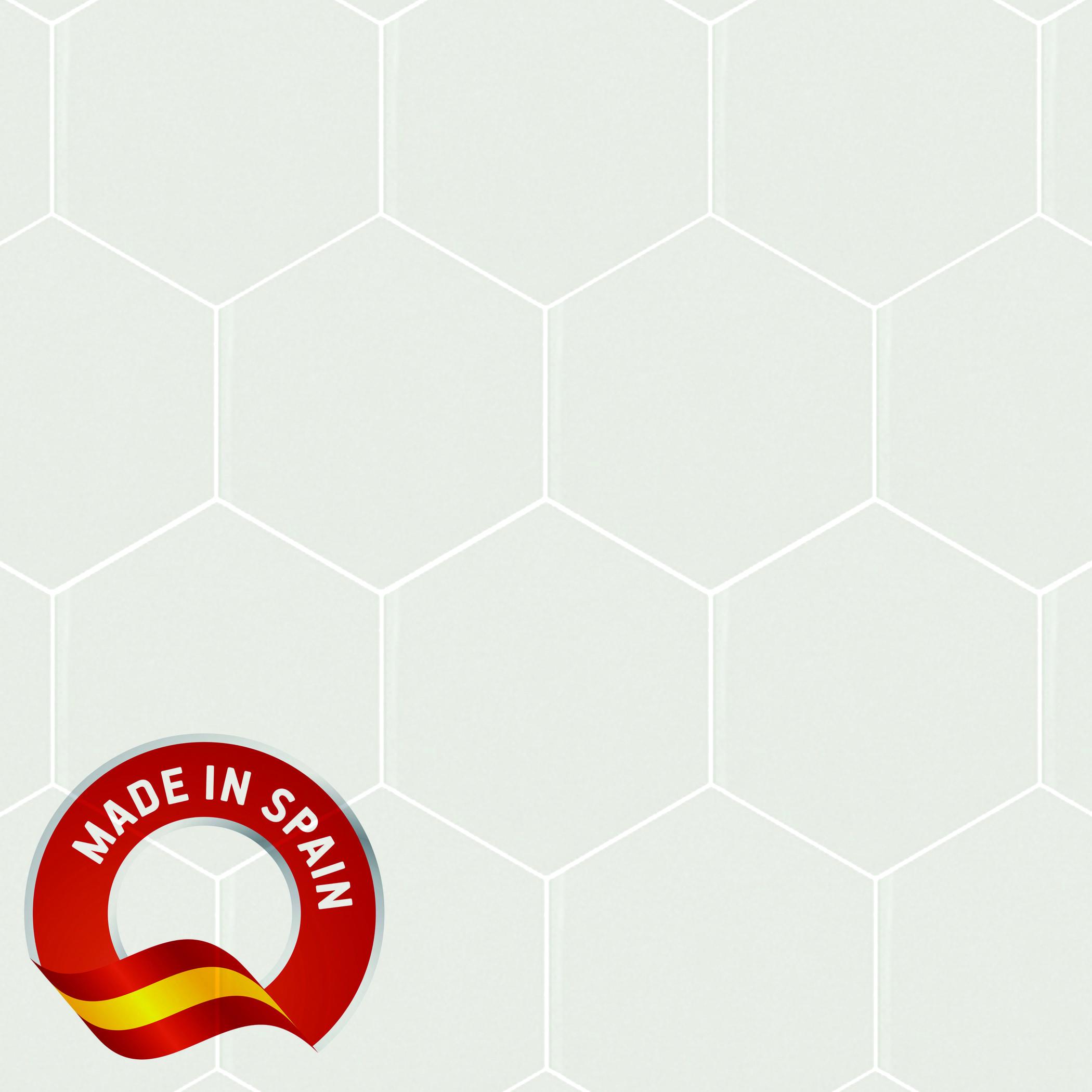 Hexagon White Matte / 5x4 Olympus - Minerva 0