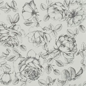 1-36 Flower / 12x24 Olympus - Morpheus 0