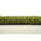 4x6_emerald_fescue_go_green_distributors_0066_581aa2d2ee62c