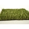 5x7_emerald_fescue_go_green_distributors_0068_581aa26fa1401