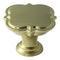 golden_champagne_knob_amerock_cabinet_hardware_grace_revitalize_bp36629bbz_silo__59a8276fbd2a9