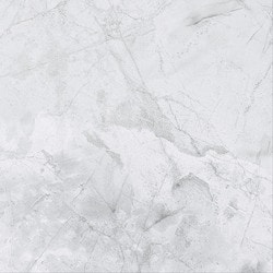 20x20 Porcelain Tile Flooring - FREE Samples Available at BuildDirect®