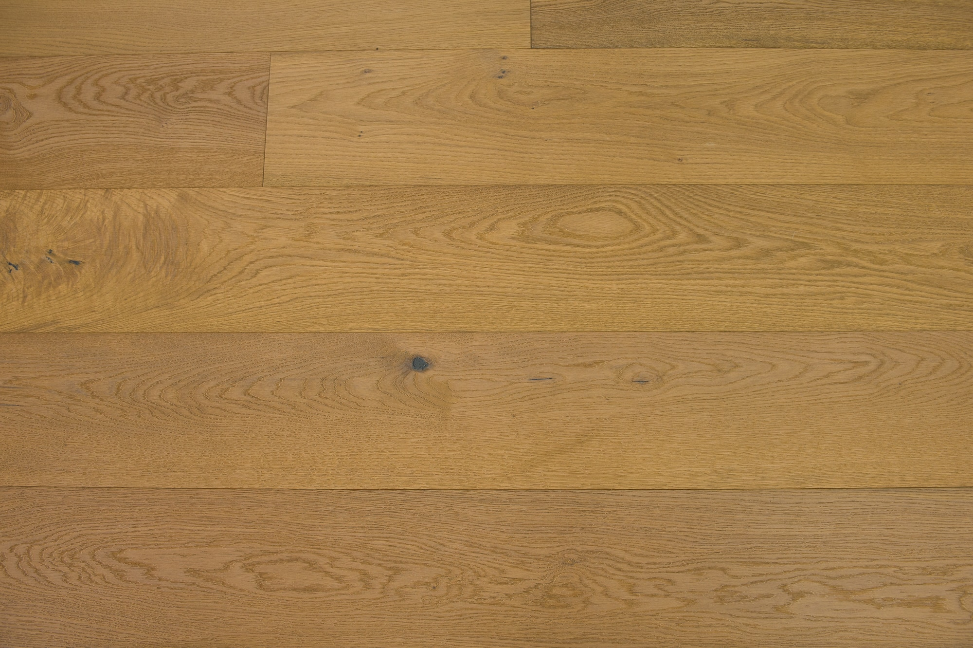 Biscotti / European White Oak / UV Oil Finish / ABCD / Sample Engineered Hardwood - European White Oak - Denali Collection 0