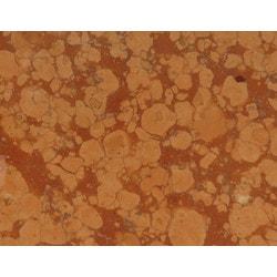 Stone & Tile Shoppe, Inc. Stone & Tile Shoppe Rosso Verona Marble Tile