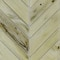 Detail Photo - Close View