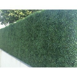 Century Home Living - Century Home Living Fence Covering Artificial Plane Hedge Boxwood