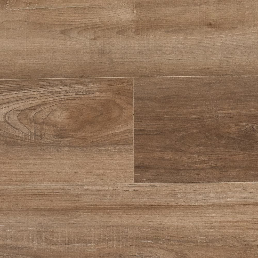 victorum___lithe_sequoia_2_5fb866652af9b
