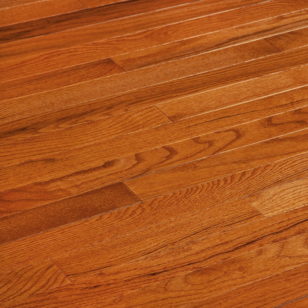 Free Samples Jasper Hardwood Smooth Oak Strip Butterscotch Oak